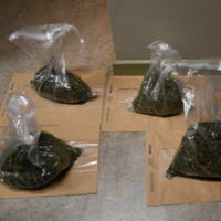 Over €600k worth of drugs seized by organised crime gardaí during searches of cars in Swords, Dublin