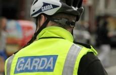 Lift garda recruitment embargo to help fight crime, says O'Brien