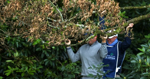 Pádraig Harrington dabbles in some casual gardening midway through his Irish Open round