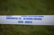 Gardaí investigating after man found on N3 dies in 'unexplained circumstances'
