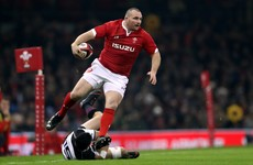 Wales lose Lions hooker Owens to injury for entire autumn series