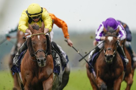 Addeybb wins The Champion Stakes.