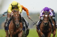 Addeybb just Champion at Ascot for Haggas and Marquand