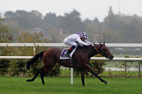 Poetic Flare wins at Leopardstown today.