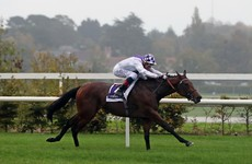 Poetic Flare lights up Leopardstown while Irish challenger Njord also wins