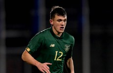 Ireland's newest senior international has enjoyed 'a crazy 18 months'