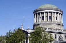 Garda launches High Court challenge aimed at preventing dismissal from force