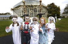 From the Bram Stoker Festival to spooky tours of Dublin - here are some online events to keep you busy this Halloween