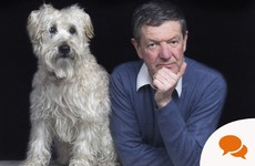 Opinion: Let's celebrate the dog - man's best friend in a pandemic