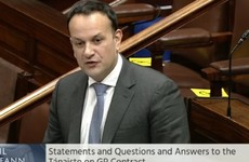Leo Varadkar apologises for 'errors of judgement', says he is 'not close friends' with Dr Ó Tuathail