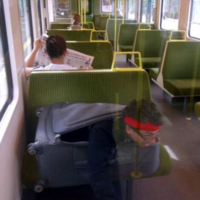 Public Transport Passenger of the Day
