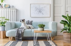 Stylish sofa or designer appliances? Rate your priorities when furnishing a home here