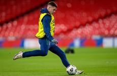 James McCarthy withdraws from Irish squad ahead of England clash