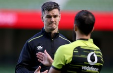 Does Johnny Sexton need more support in his role as Ireland captain?