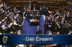 VIDEO: Rowdy scenes - but no disagreement - as Dáil votes for eight-week break