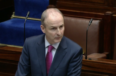 Taoiseach defends nomination of former Senator and ex-NAGP lobbyist Geraldine Feeney to Sipo