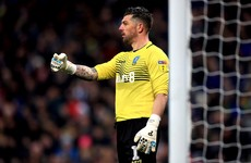 New Sheffield Wednesday boss Pulis brings Irish 'keeper Westwood in from the cold after a year without football