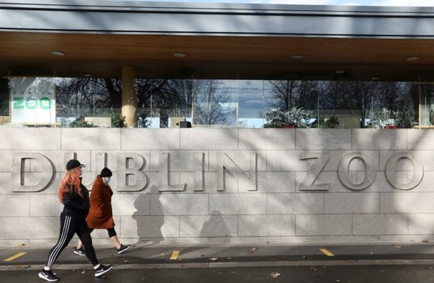 Irish zoos to get €1.6 million bump in funding after campaign to save Dublin Zoo gathers massive support