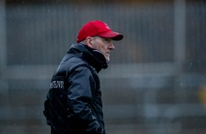 Mickey Harte takes on role as Louth manager