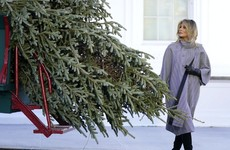 White House presses on with Christmas tree ceremony despite coronavirus warnings