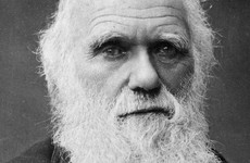 Darwin manuscripts reported stolen from university library two decades after they were last seen