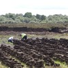 Cabinet approves €108 million funding for Bord na Móna rehabilitation plan