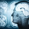 Your evening longread: What you need to know about how your brain works