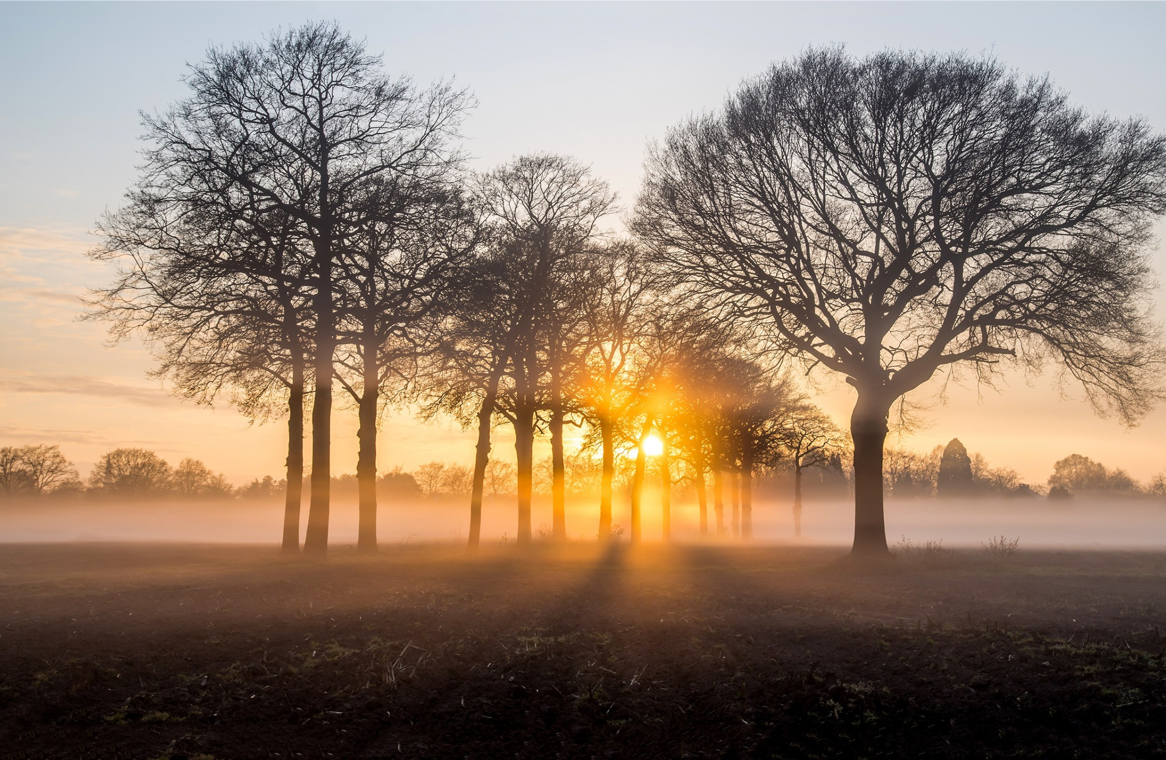 Met Éireann issue status yellow fog warning for entire country