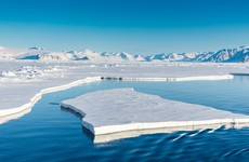The Arctic endured one of its hottest years in 2020, study finds
