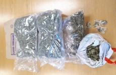 Woman (30s) arrested after €48,000 worth of cannabis seized in Longford