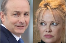 Pamela Anderson urges Taoiseach to ban hare coursing in Ireland
