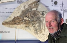 New type of prehistoric 'sea dragon' discovered on beach in England