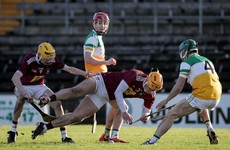 Success for Offaly as they move into Leinster final date with Cats