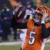 Bengals stun Steelers as Pittsburgh suffer third straight loss