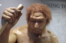 Modern humans a 'greater threat' to Neanderthals than natural disasters