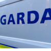 Man shot dead by gardaí in Clonee named locally as George Nkencho