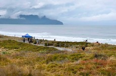Woman dies in suspected shark attack in New Zealand