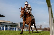 Johnny Ward: Cheltenham without the Irish is a dispiriting thought