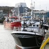 Five more Irish ports to allow Northern Ireland fishing vessels to land from next month