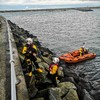 Lifeboat crew rescues dog after slip near Dun Laoghaire pier