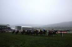 Tomorrow's Cheltenham Trials Day meeting has been called off