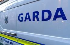 Gardaí investigating alleged sexual assault in Tolka Valley Park