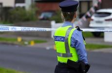 Gardaí appeal for witnesses in burglary that left home owner hospitalised