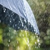 Status Yellow rainfall warning in place for five counties