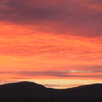 This 40-second video is practically every Irish morning ever