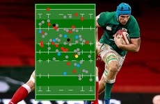 Top carrier, tackler, passer, and jackler - Tadhg Beirne's best game yet for Ireland
