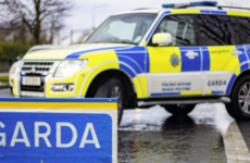 Third of a tonne of cannabis found by gardaí in €7.4 million Kildare seizure