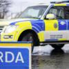 Third of a tonne of cannabis found by gardaí in €7.4 million Kildare seizure