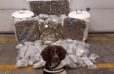 €270k worth of cannabis found in parcel and electric heaters in two separate operations at Dublin Port