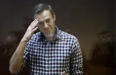 Moscow appeal court upholds Kremlin critic Navalny's prison sentence